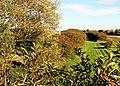 Disused Railway - geograph.org.uk - 266480.jpg