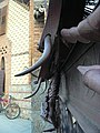 Drac i porta del Jardí de les Hespèrides P1440919.JPG