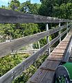 Dragon's Tail Alpine Coaster (31895452031).jpg
