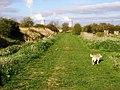 Drainside Path - geograph.org.uk - 278362.jpg