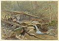 Drawing, Pool in the Woods, 1875 (CH 18300391).jpg
