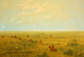 Driving the pampas for wild cattle - connibo.PNG