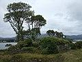 Dunboy Castle - geograph.org.uk - 499447.jpg