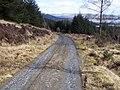 Dunoon, Tom Odhar-Bishops Glen Track - geograph.org.uk - 150118.jpg