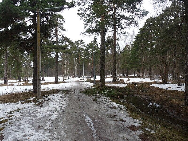 File:EU-EE-Tallinn-Pirita-Maarjamäe-pedestrian road between Haljas and Kose.JPG
