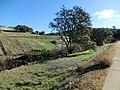 El Dorodo Hill, CA 6073 - panoramio.jpg
