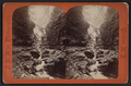 Elfin gorge, Watkins Glen, N.Y, by Hope, J. D., 1846-1929.png
