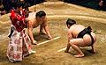 Endō vs. Satoyama 2014 Hatsu basho Tokyo 001.jpg