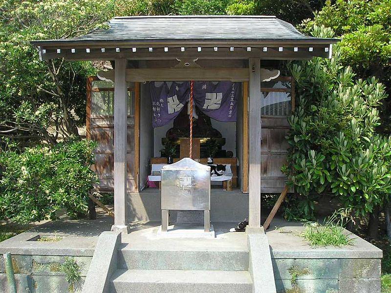 File:Enosshimatiikineko02.jpg