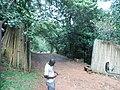 Entrance to Sezibwa Falls.jpg
