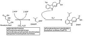 Ergocryptine - Ergocryptine-part1