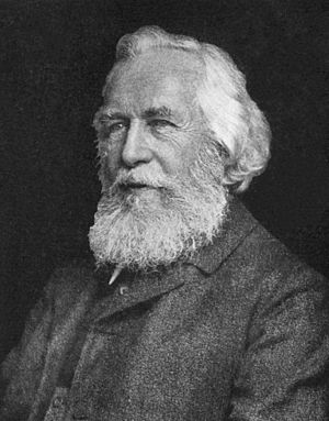 Ernst Haeckel - Image: Ernst Haeckel 5