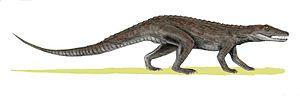 Erpetosuchidae - Life restoration of Erpetosuchus granti