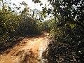 Estrada para Rio Verde - panoramio (4).jpg