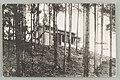 Eteläinen metsänvartijan talo, A. Sihvonen 1900–1910s PK0379.jpg