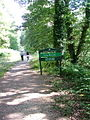 Ethy Woods - geograph.org.uk - 223305.jpg