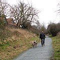Exercising the dogs - geograph.org.uk - 1189143.jpg