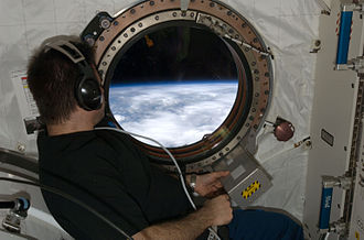 Gregory Chamitoff peers out of a window Exp18home nasa big.jpg