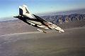 F-14B VF-143 Bomb.JPEG
