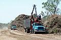 FEMA - 38994 - Hurricane Ike debris site in Texas.jpg