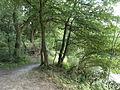 FFM-Nied Nidda-Altarm Waldspitze Uferweg O.jpg