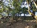 Falam, Myanmar (Burma) - panoramio (48).jpg