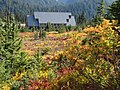 Fall colors around JVC 2. Mid September 2015. (d67fecd7add745b2b38c64f1363ea9ff).JPG