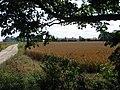 Farm TA1238 - geograph.org.uk - 32574.jpg