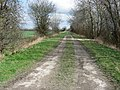 Farm Track - geograph.org.uk - 732490.jpg