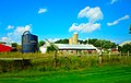 Farm with Three Silos - panoramio (12).jpg
