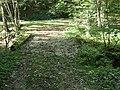 Feldweg-Brücke über die Ergolz, Anwil BL 2 20180926-jag9889.jpg