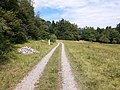 Feldweg im Tysliboll.jpg