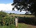 Field near Cranbrook - geograph.org.uk - 1478149.jpg