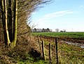 Field south of Flint Lane - geograph.org.uk - 326896.jpg