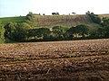 Fields near Greyhill Cross - geograph.org.uk - 243654.jpg