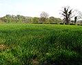 Fields near Purdysburn - geograph.org.uk - 791587.jpg