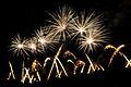 Fireworks Wianki 2009 (3644956133).jpg