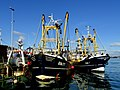 Fishing Trawlers moored in Brixham Harbour.jpg