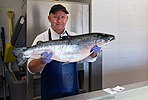 Fishmonger in ICA Fish stall holding a salmon.jpg