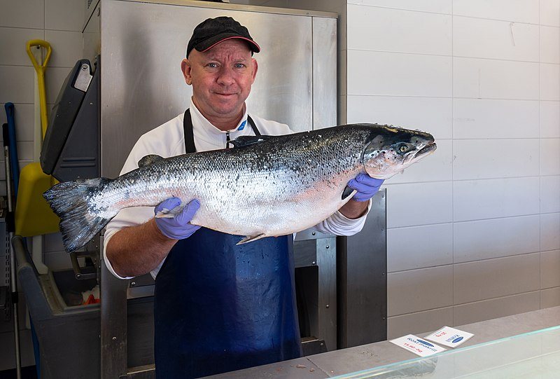 Datei:Fishmonger in ICA Fish stall holding a salmon.jpg
