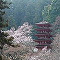 Five-story Pagoda of Hasedera Temple 長谷寺五重塔 - panoramio.jpg