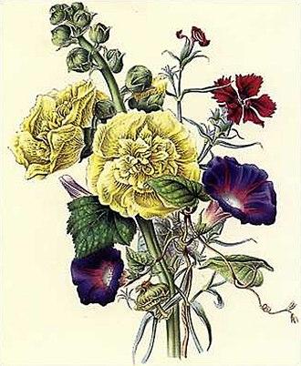 James Andrews (botanical artist) - Image: Flora's Gems 06a