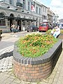 Flowerbed opposite the Queen's Theatre - geograph.org.uk - 939098.jpg