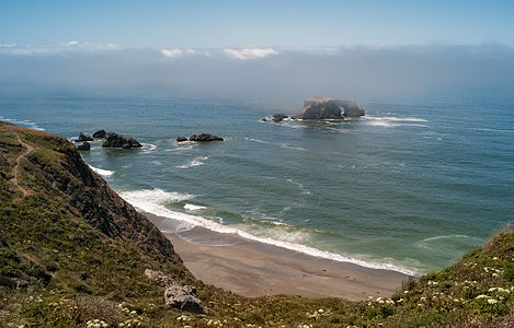 Fog rolling over Arched Rock near Goat Rock Beach, Sonoma County, California.