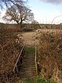 Footbridge and permissive footpath west of Beaulieu, New Forest - geograph.org.uk - 146932.jpg