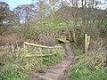 Footbridge on the 'Sandstone Trail'. - geograph.org.uk - 665298.jpg
