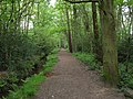 Footpath near Fleet Pond - geograph.org.uk - 170334.jpg