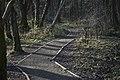 Footpath to Brock Bottom - geograph.org.uk - 1702052.jpg