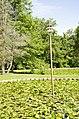 Forest Park, Springfield, MA 01108, USA - panoramio (62).jpg