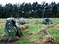 Fortingall Stone Circles - geograph.org.uk - 307166.jpg